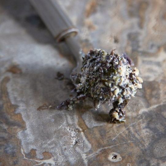 seaweed-085